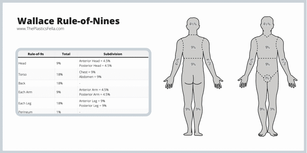 Calculating the total body surface area of a burn with Wallace Rule of Nines
